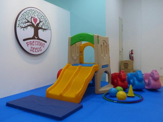 Precious Seeds Early Learning and Child Care Center, Bandar Sunway
