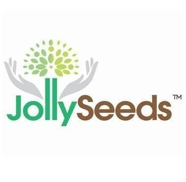Teacher / Nurse @ Jolly Seeds Educare