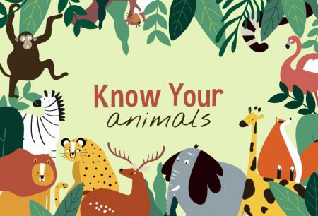 Know Your Animals!