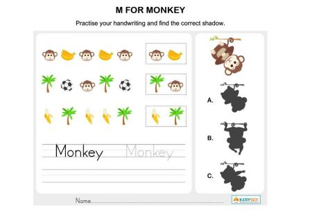 LANGUAGE - M for monkey