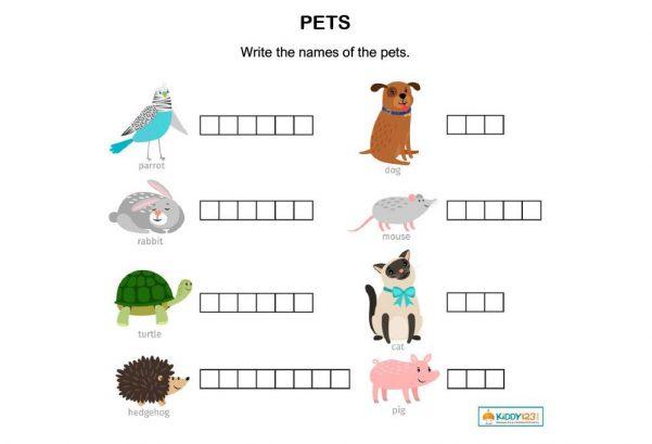 LANGUAGE - Pets