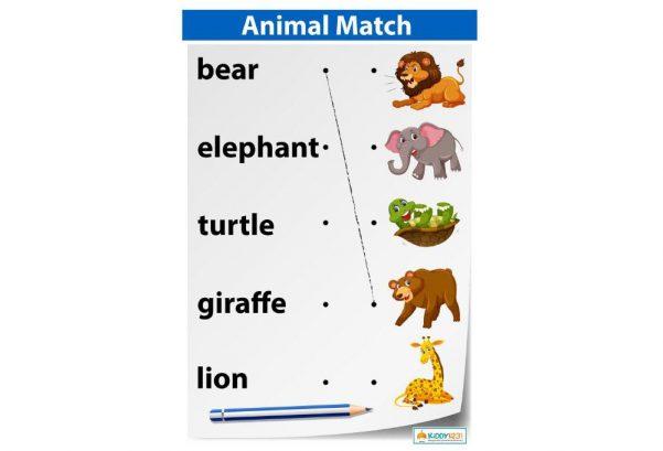 LANGUAGE - Animals