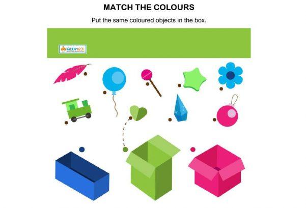 LOGIC - Match Colour Box