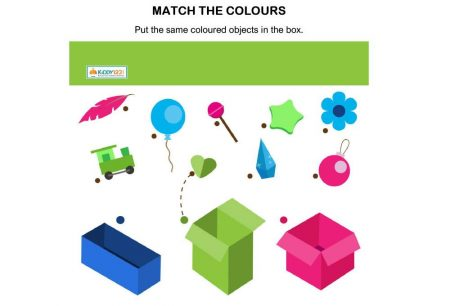 Logic & Puzzles - Match Colour Box