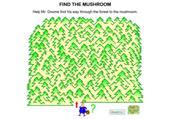 Logic & Puzzles - Maze Find The Mushroom