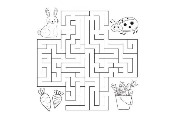 LOGIC - Maze