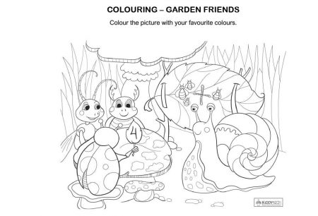 Art - Colouring Garden Friends