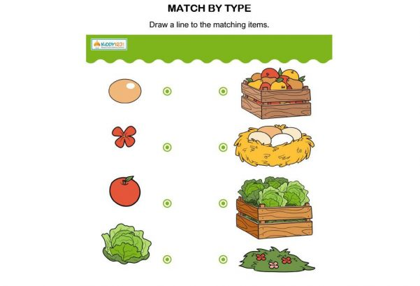 Logic & Puzzles - Match By Type