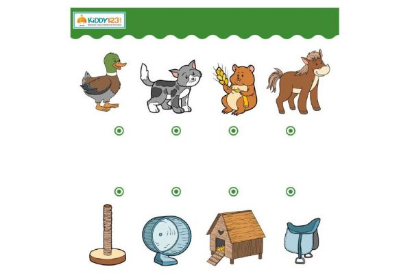 Logic & Puzzles - Match Animals Objects