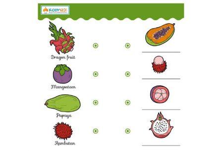 Logic & Puzzles - Match Fruit