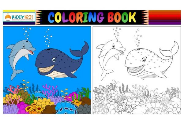 Art - Colouring Under The Sea