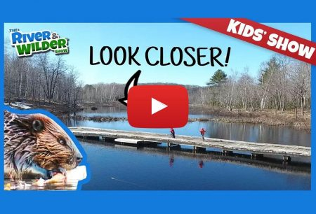 The River and Wilder Show: KIDS EXPLORE BEAVER LODGES AND DAMS