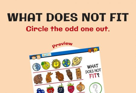 Logic & Puzzles - What does not fit