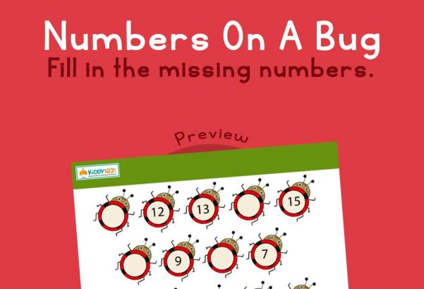 Numbers - Numbers on a bug