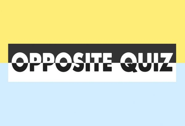 Opposite Quiz