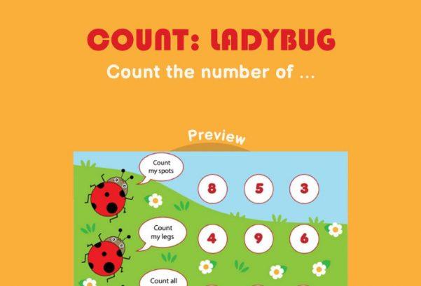 Numbers - Count: Ladybug