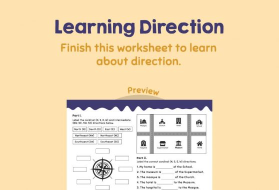 Social Studies - Learning Direction