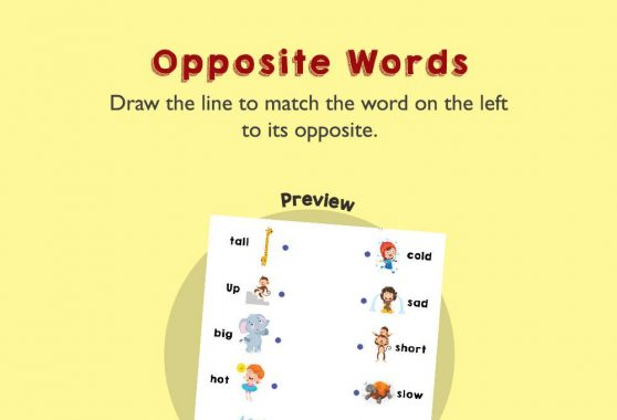 Language - Opposite Words