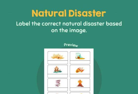 Social Studies - Natural Disaster