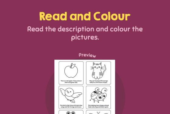 Language - Read and colour