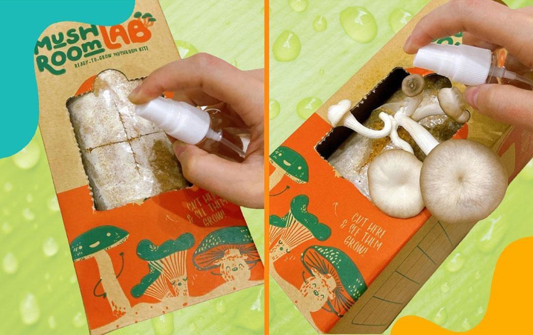 4 Fun DIY Activities For Kids