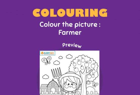Art - Colouring: Farmer