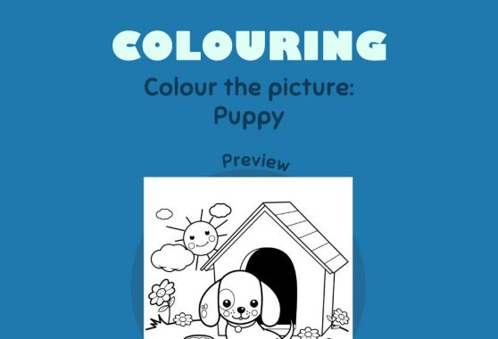 Art - Colouring: Puppy