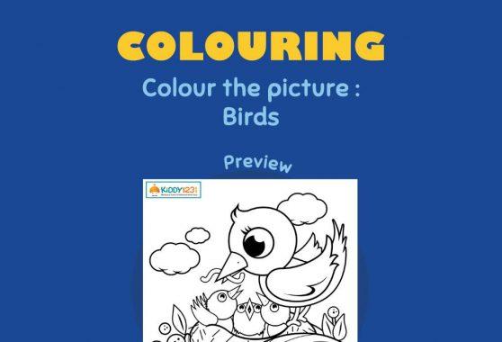 Art - Coloring: Birds