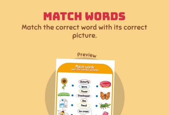 Language - Match the Word: Random